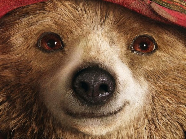 paddington-movie-wallpaper_432170560